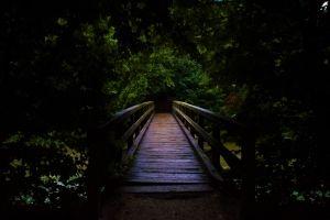 Kovács Dorottya: A sötétség hídja