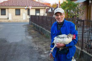 Löki Viktor: Baromfi és gazdája
