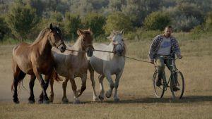 Körmendy Zizi: Pista és lovai