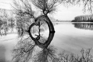 Varga András: Egy kis áradás