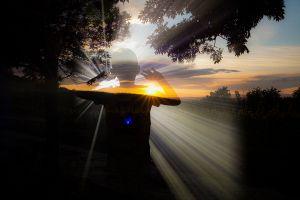 Bozó Pál: A fény gyermekei