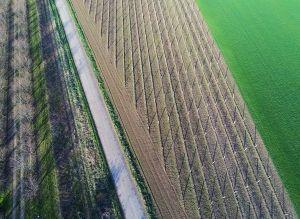 Mádi József: Agrogeometria
