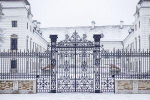 Bolla Bernadett: Egy jelkép visszatért (sorozat)